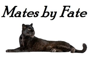 Black Leopard, 6 years old, in front of a white background