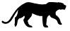 Leopard set vector